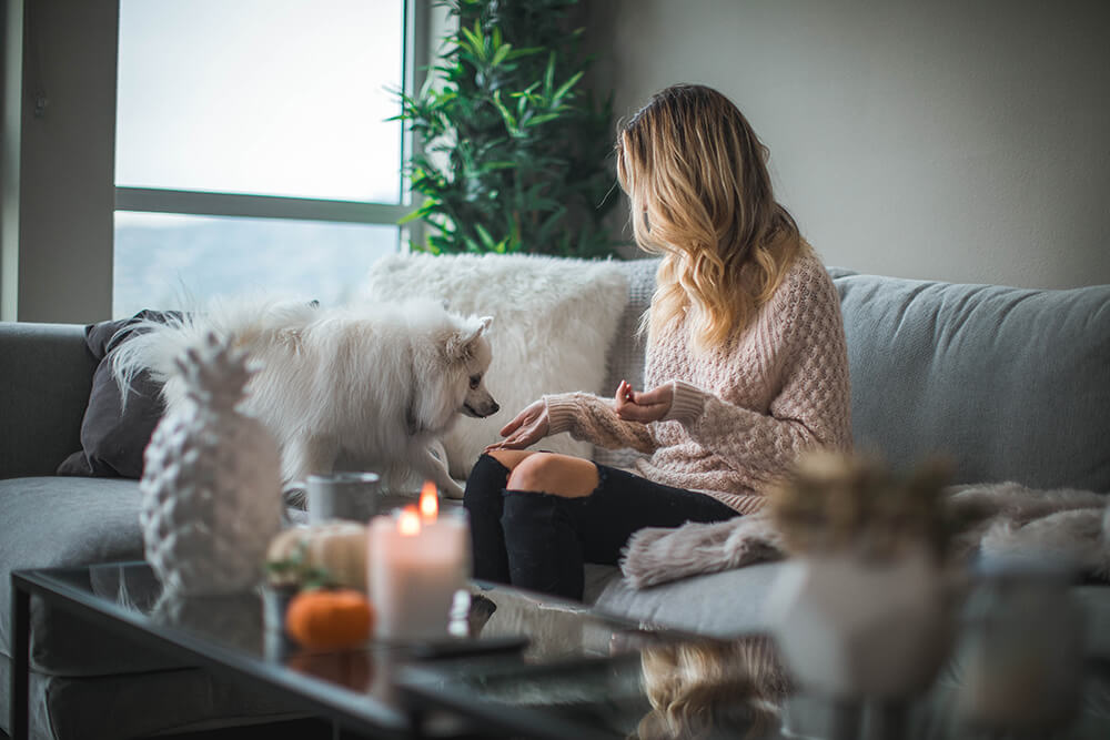 Consejos para decorar su sala de estar